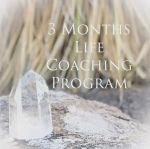 3 month life coaching program