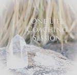 one life coaching session